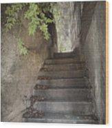 Old Bisbee Stairway Wood Print