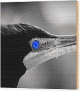 Old Blue Eyes Is Back Wood Print