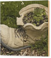 Old Boot Wood Print
