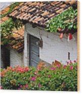 Old Buildings In Puerto Vallarta Mexico Wood Print by Elena Elisseeva