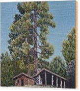 Old Cabin In The Pines Wood Print