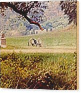 Old Cannon At Gettysburg Wood Print