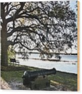 Old Cannon By The Sea Wood Print