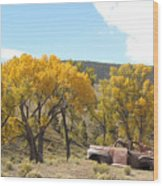 Old Car In The Canyon  Wood Print