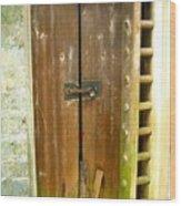 Old Chinese Village Door Series Eight Wood Print