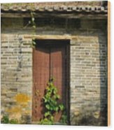 Old Chinese Village Door Series Sixteen Wood Print