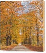 Old Coach Road Autumn Wood Print