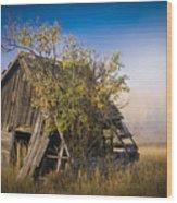 Old Coal Miner's Shack Wood Print