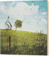Old Country School House  On A Hill  Wood Print