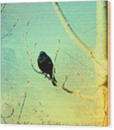 Old Crow Medicine Show Wood Print