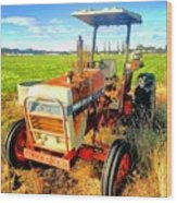 Old David Brown Tractor  Wood Print