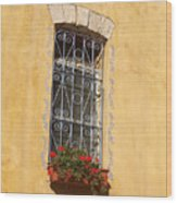 Old Decorated Window In Safed Wood Print
