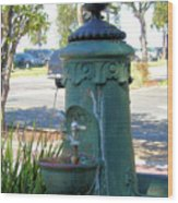 Old Drinking Fountain Wood Print