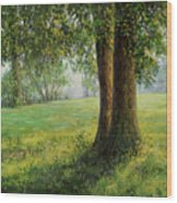 Old Elms In Kernave Wood Print