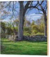 Old Family Plot In Cromwell Valley Park Wood Print