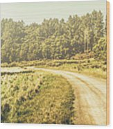 Old-fashioned Country Lane Wood Print