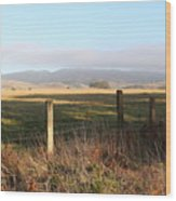 Old Fence And Landscape Along Sir Francis Drake Boulevard At Point Reyes California . 7d9965 Wood Print