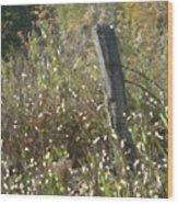 Old Fence Post Wood Print