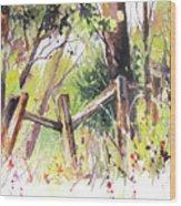 Old Fence Wood Print