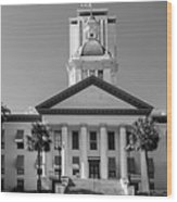 Old Florida Capitol In Black And White  Wood Print