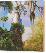Old Florida Wood Print