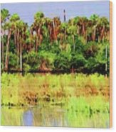 Old Florida Loop Palms Wood Print