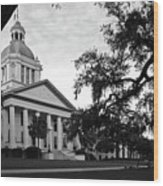 Old Florida State Capitol Building Wood Print