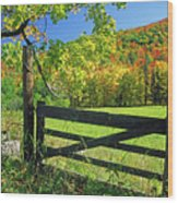 Old Gate At East Orange Wood Print