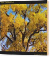 Old Giant  Autumn Cottonwood Orton Wood Print
