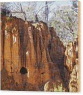 Old Gold Mine Shafts Wood Print