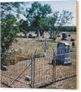 Old Grave Site 2 Wood Print