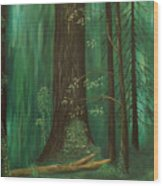 Old Growth Priest Point Park Wood Print