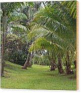 Old Hawaiian Garden Wood Print