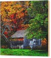 Old Homestead And The Apple Tree Wood Print