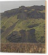 Old Icelandic Island Panorama Wood Print