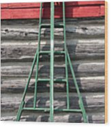 Old Ladder Wood Print