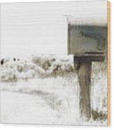 Old Mailbox Wood Print