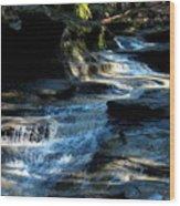 Old Man's Cave Ohio 2012 Wood Print