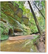 Old Man's Gorge Trail And Caves Hocking Hills Ohio Wood Print