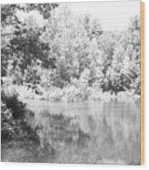 Old Michigan Creek Wood Print