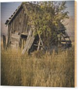 Old Miner's Shack Wood Print