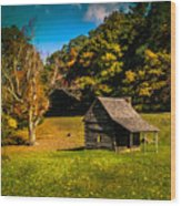 Old Mountain House Wood Print