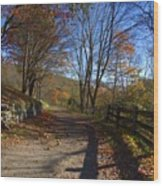 Old Mountain Road Wood Print