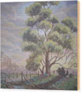 Old Oak Tree Creek Wood Print
