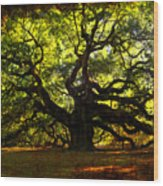 Old Old Angel Oak In Charleston Wood Print by Susanne Van Hulst