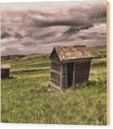 Old Outhouses Wood Print
