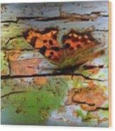 Old Paint On Wood Wood Print