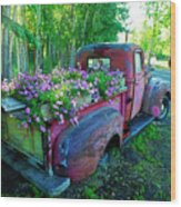 Old Pickup Truck As Flower Bed Wood Print