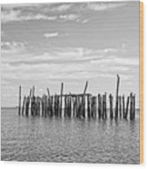 Old Pier Provincetown Harbor Cape Cod Wood Print