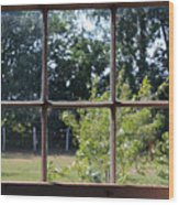 Old Pitted Glass Window Wood Print